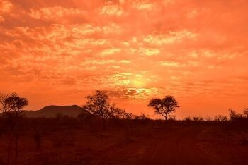 African sunset. Madikwe Game Reserve, North West
